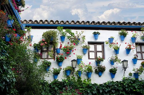 Courtyards (Patios) in Cordoba Spain