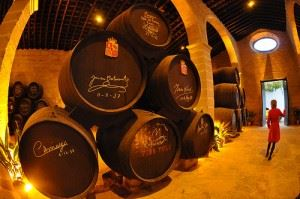 Totally Jerez de la Frontera Angela Clarence flamenco horses bodegas sherry wineries