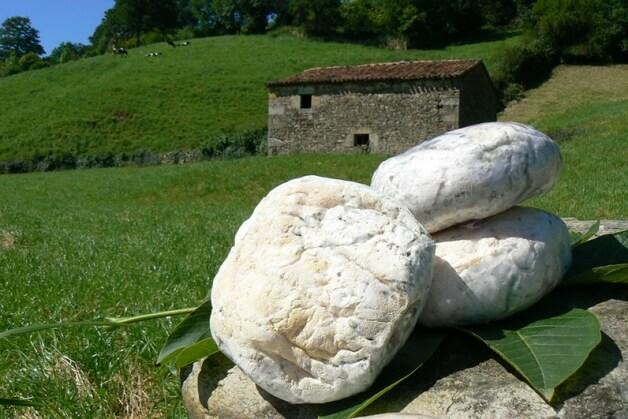 Cantabria gastronomy tour