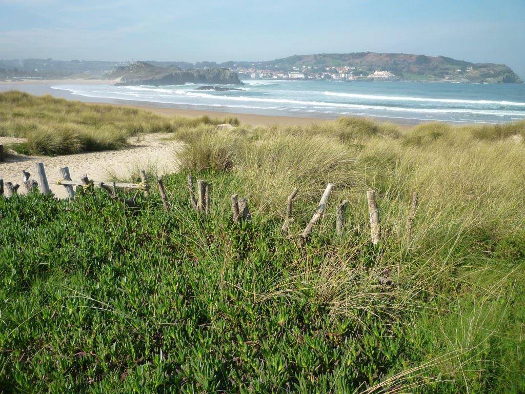 Totally Spain Cantabria California Ris Noja beach
