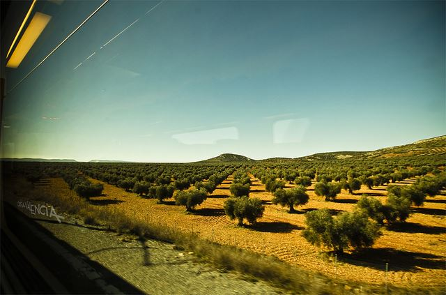 hidden Andalusia Spain train journeys unusual Andalusia