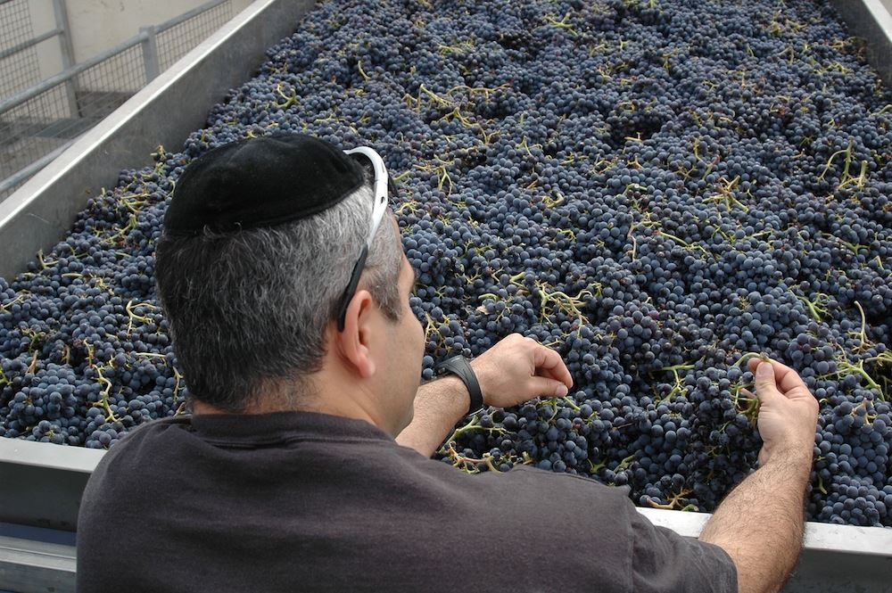 bodegas wineries Spain Spanish kosher visit tour tasting best wineries in spain