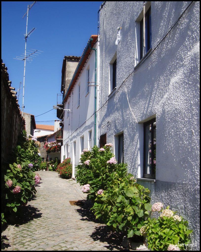 Jewish Portugal history community heritage