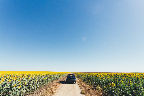 Agricultural Touring in Spain