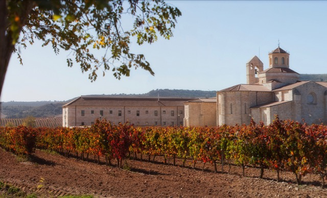 Ribera del Duero winery vines vineyards red touring tasting hotels