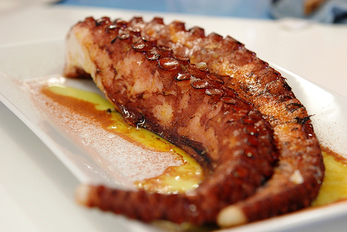 octopus seafood Spain pulpo oil