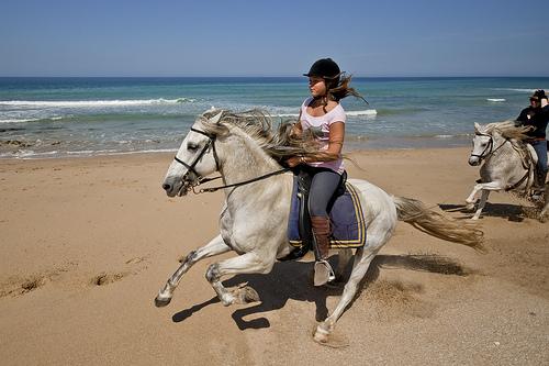 symbols of Spain horse