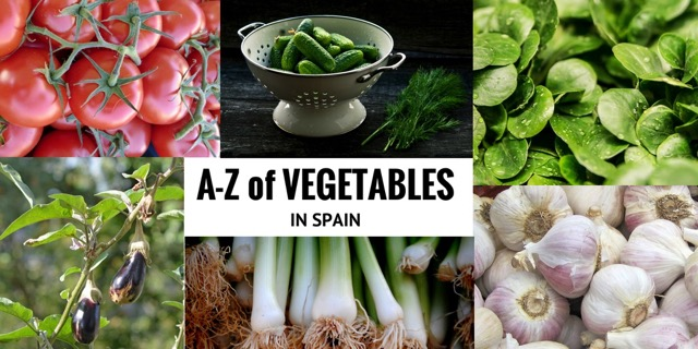 seasonal vegetables in spain collage