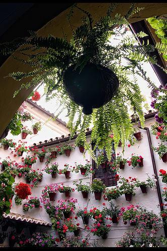 UNESCO-listed whitewashed courtyards of Cordoba Spain
