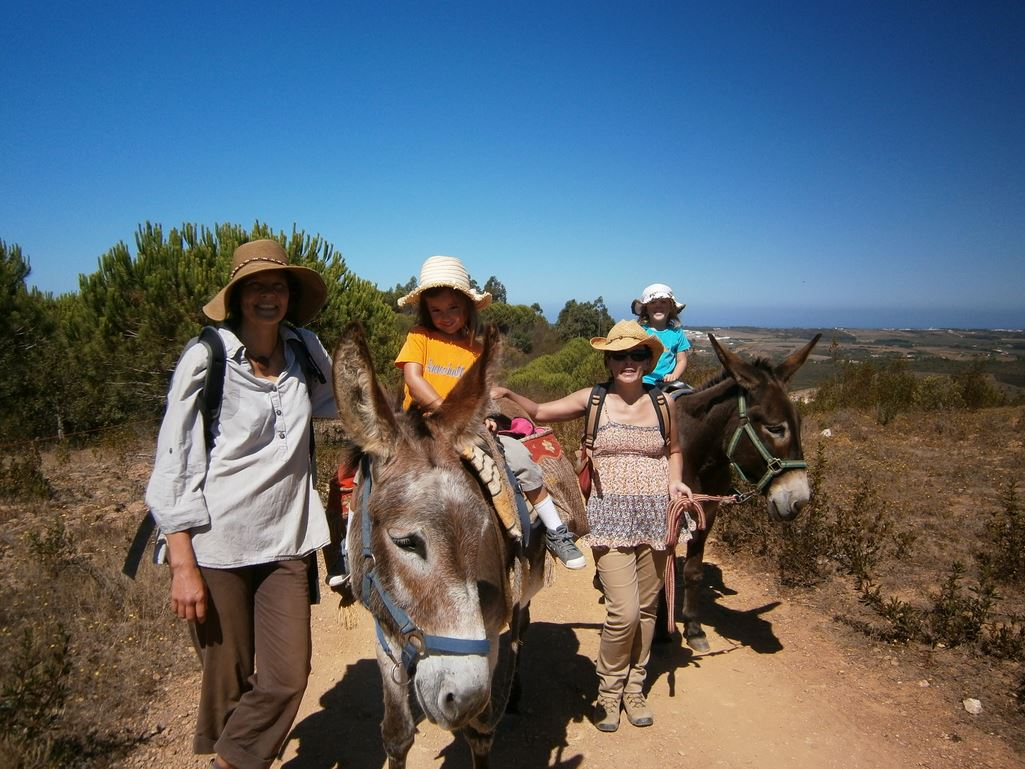 Ken family Totally Spain donkeys Portugal