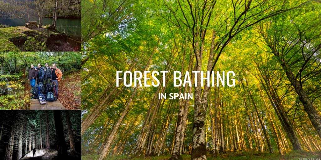forest bathing in Spain